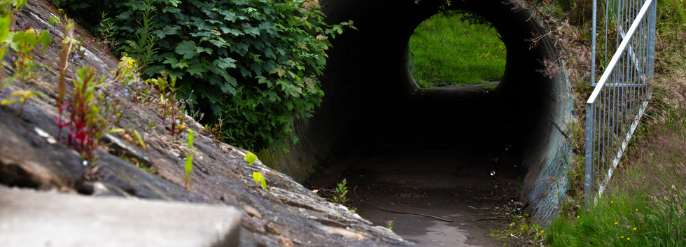 overspill denny tunnel 130620.jpg