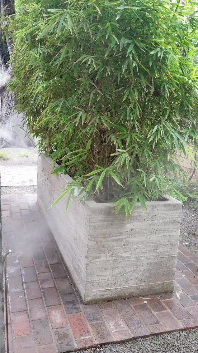Non-toxic mosquito misting