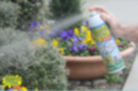 Organic Mosquito control is safe for kids.  Play in your yard again!
