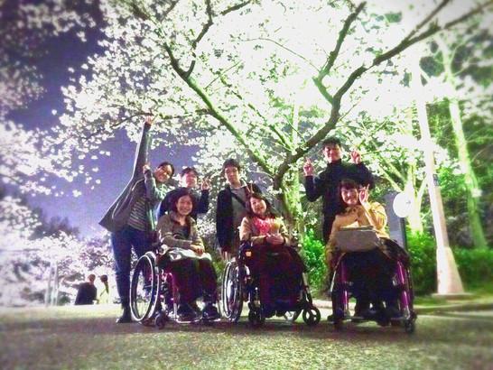 満開の夜桜お花見会