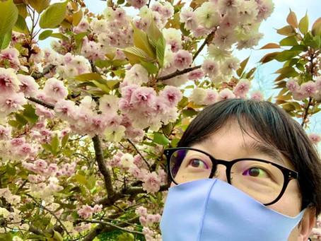 【春の桜や草花に想いを馳せて2021】