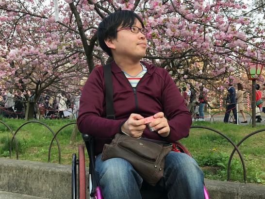 【車いすで造幣局桜の通り抜け〜お昼間〜】