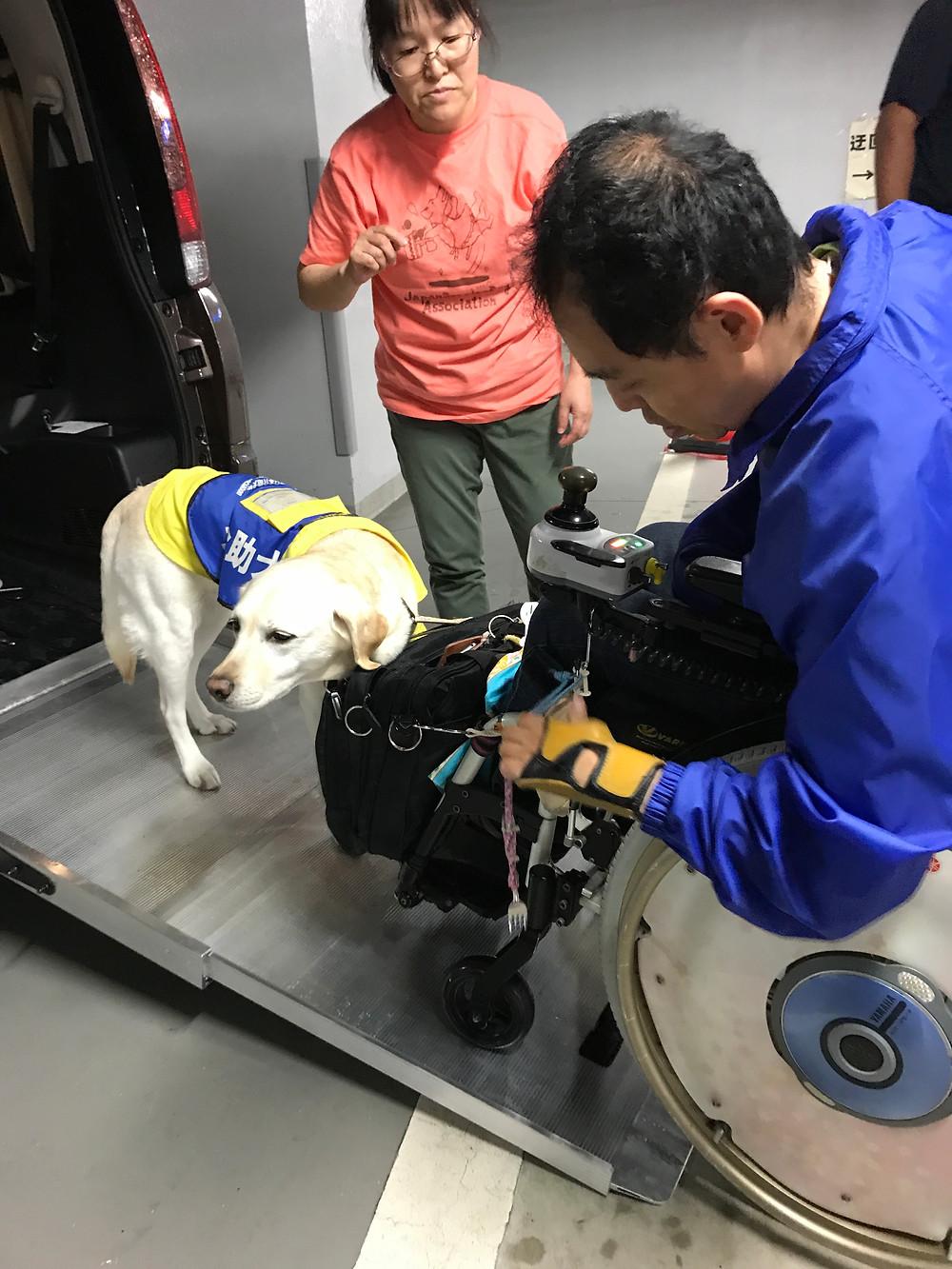 介助犬タフィーと介助犬利用者平野さん