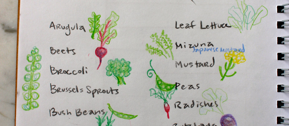 Garden Planning – Part I: What to do in the Dead of Winter