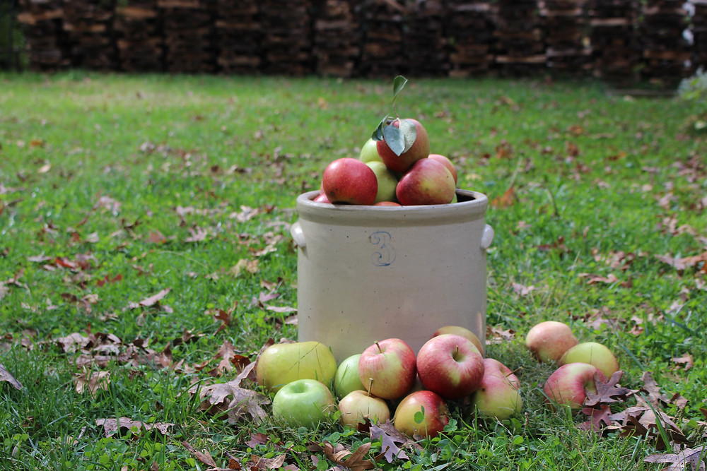 Apples in a Crock