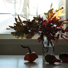 Decorating with Natural Materials: Fall Edition