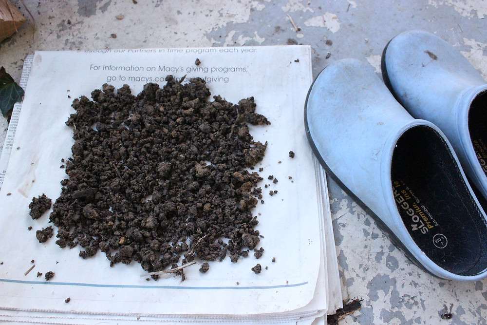 Dirt sample drying out to be shipped for testing.
