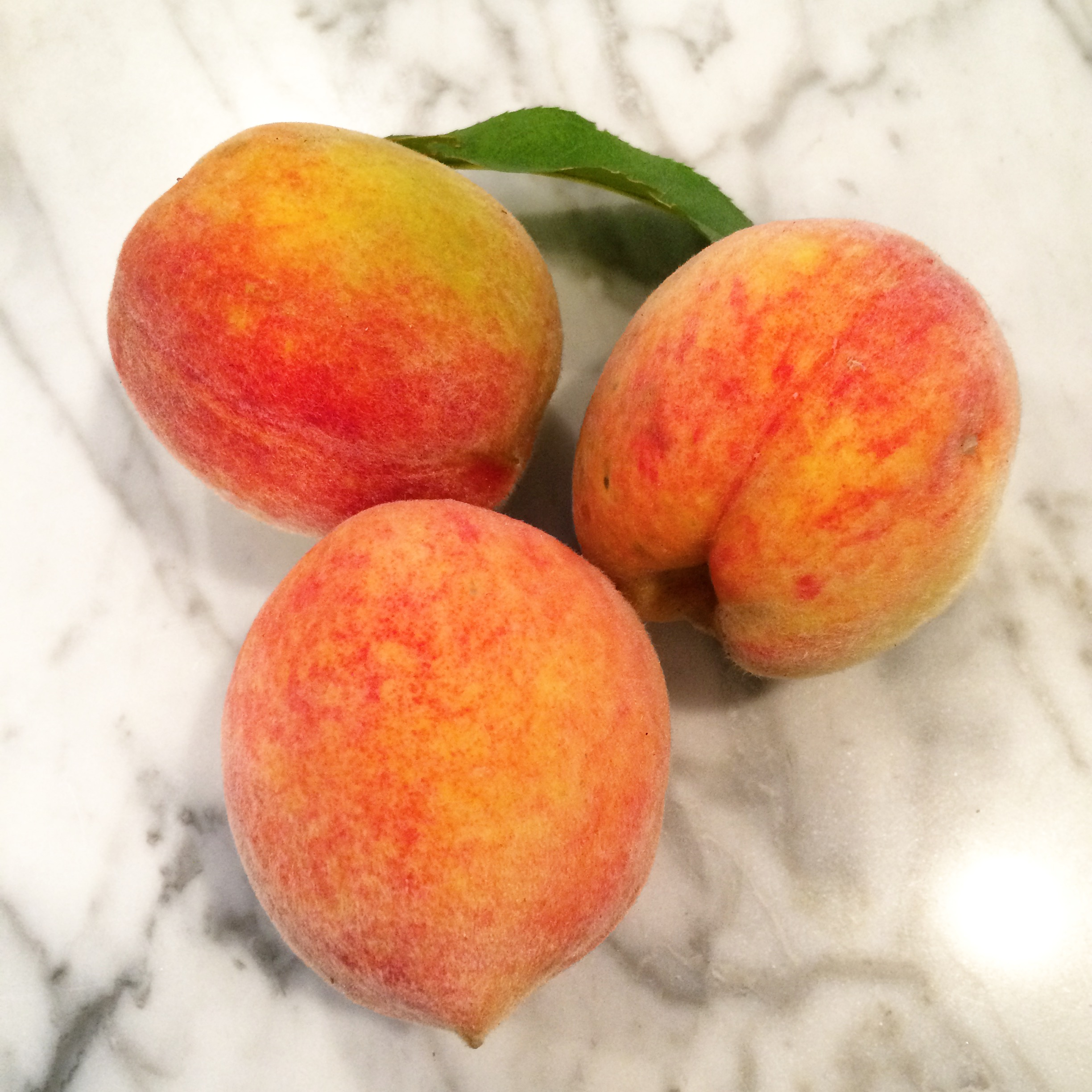 Summer Fruit - Peaches