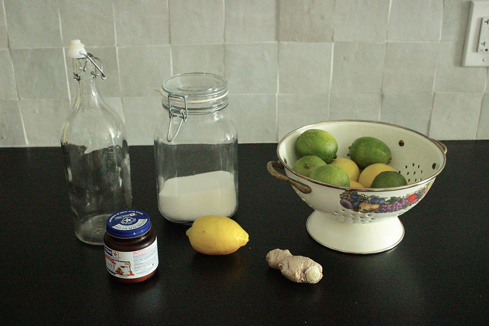 ginger ale ingredients