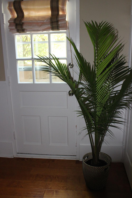 Palm Tree Air Purifier
