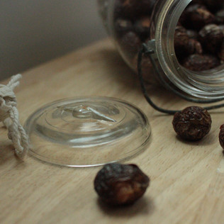 I Challenge You to Soap Nuts