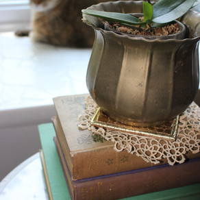Reasons to Decorate with Natural Materials
