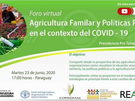 XXXII Reunião Especializada da Agricultura Familiar do Mercosul (REAF) realizada totalmente virtual