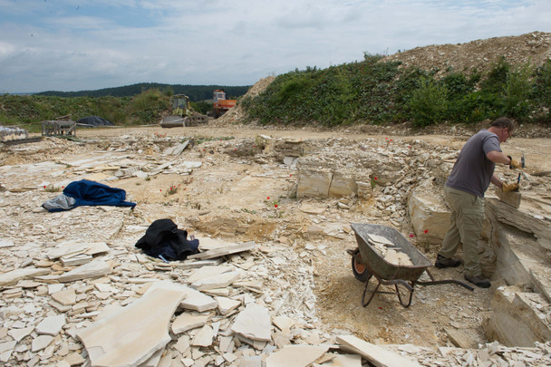 Bruce Lauer collecting in a Quarry near Muehlheim, Germany