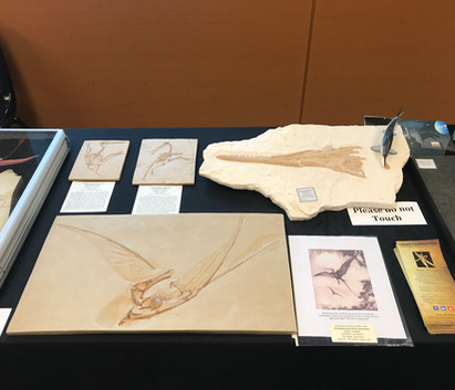 Burpee Museum of Natural History, National Fossil Day Exhibit