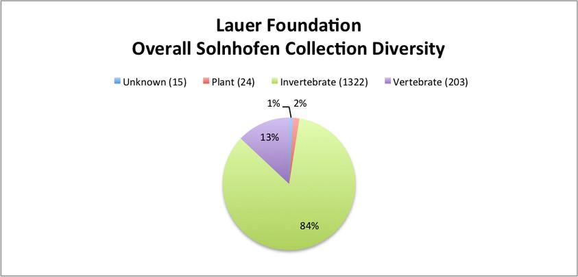 Overall Solnhofen Collection Diversity