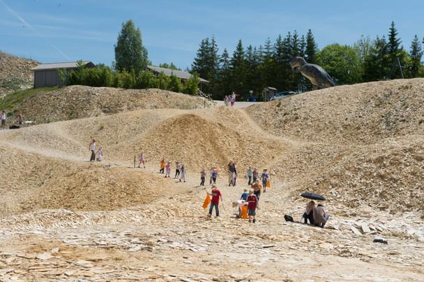 Hobby Quarry near Eichstätt, Germany