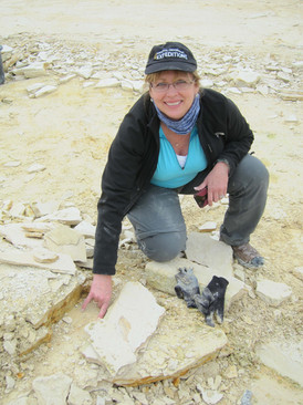 Rene Lauer collecting at Painten Quarry near Kelheim, Germany