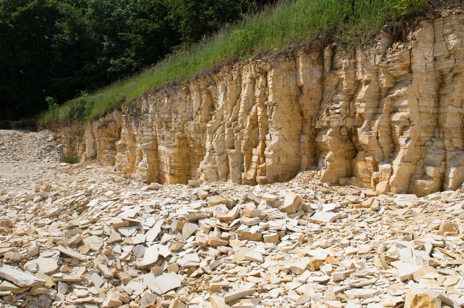 Schamhaupten Quarry near Schamhaupten, Germany