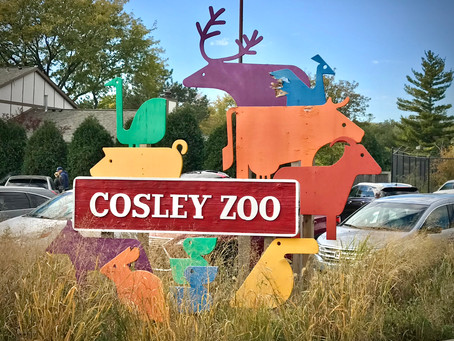National Fossil Day at Cosley Zoo