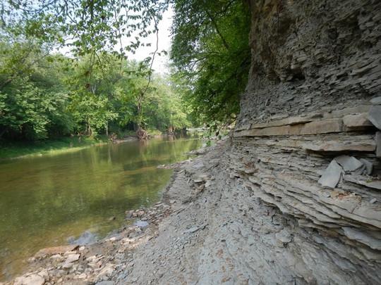 Mazon Creek Shale Outcrop