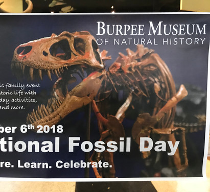 Burpee Museum of Natural History Nationa Fossil Day