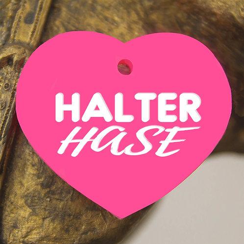 Halter Hase