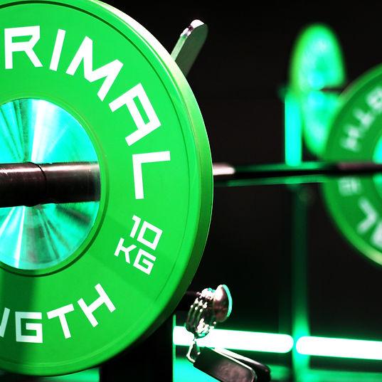 FITT41 Harpenden - Primal Strength.jpg