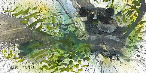 Ralph-Steadman-Critical-Critters-Indri.j