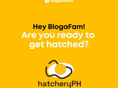 Hatchery PH is here to help content creators!