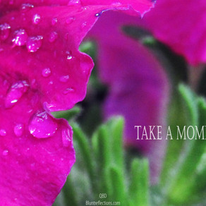 Take a moment before you.....