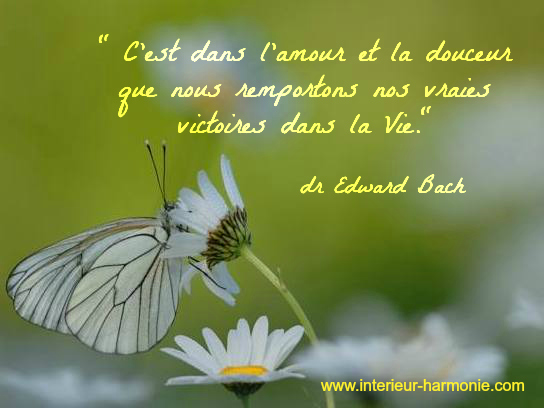 Citation du Dr Bach