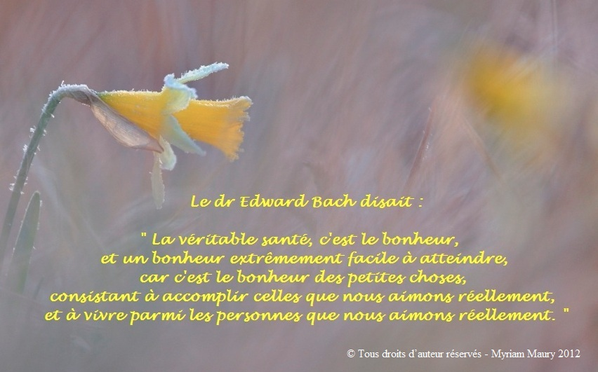 Une citation du Dr Bach