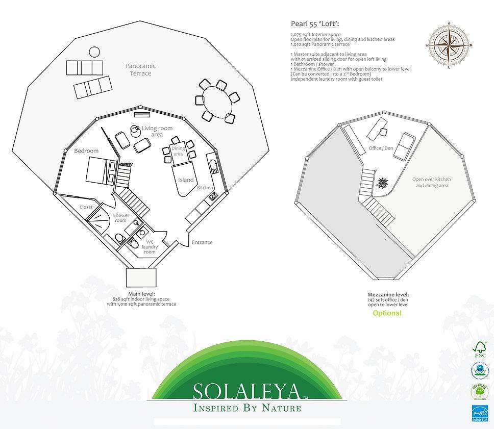 layout P55.jpg
