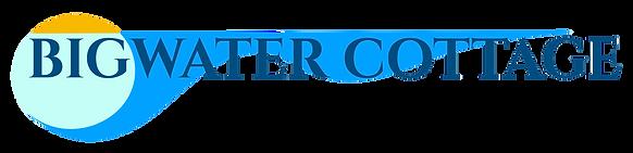 blue wave logo-best fix.png
