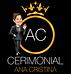 logo +ana 2.png
