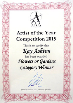 SAA Winners Certificate