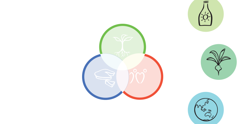 Permaculture 6 Principles