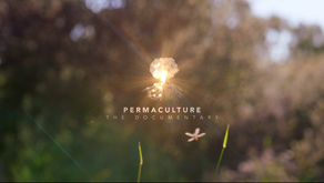 Permaculture Ethics Film Released!