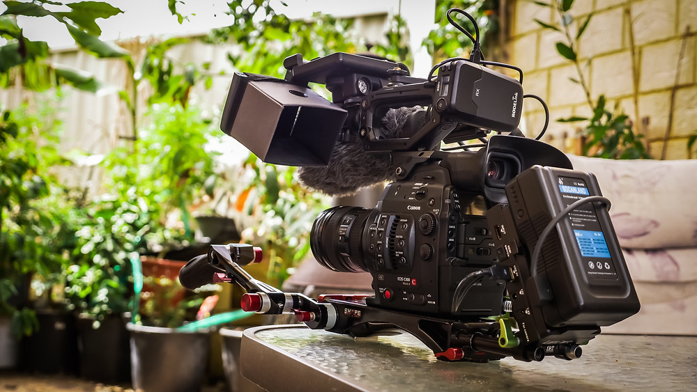 Dogs Go Woof Productions C300mkii