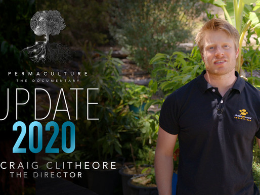 Permaculture Update 2020