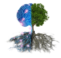 Tree-&-Brain-Solo.png