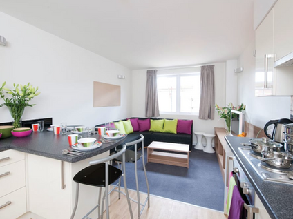 Residence Communal Kitchen & lounge