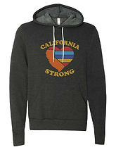 Dark Gray Sweatshirt with color logo.jpg