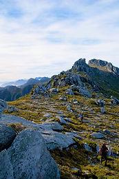 Tasmanian hikes and bushwalks