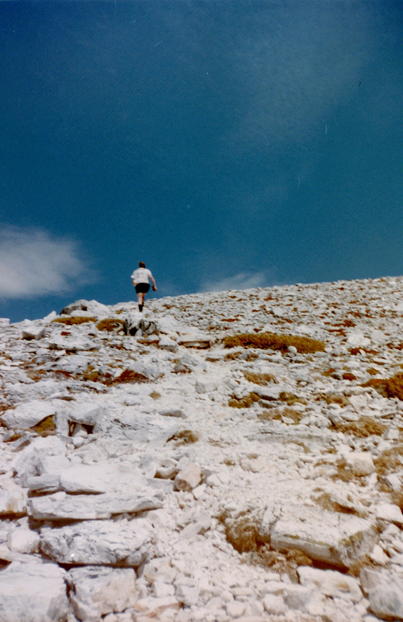 The final stroll up to the summit of Frenchmans Cap