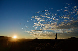 Tasmanian day and overnight walks