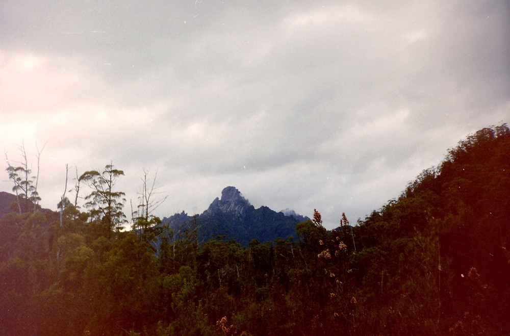 Federation Peak from the Cracroft Valley. 1999.