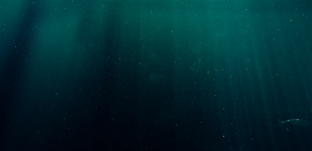 DeepOcean.png