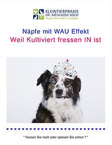 Newsletter Kleintierpraxis Bielefeld